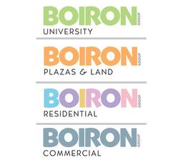 Large boiron group logo   youtube