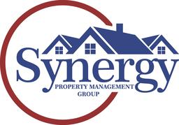 Large synergy logo   large size