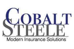 Large cobalt steele web