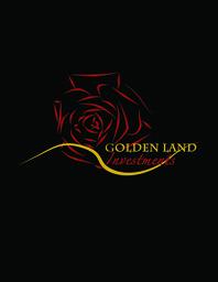Large 60671 goldenlandinvestmentspractice12 brief234317