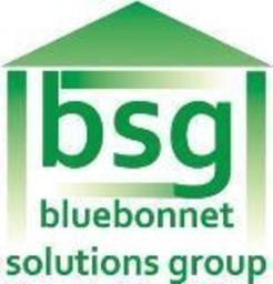 Large bsg logo compressed