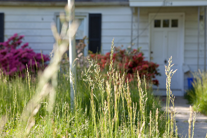 Unmowed lawn in front of a foreclosed Cape Cod style house in Suburban Maryland